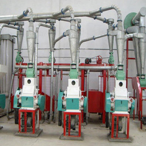 Flour Mill Plant Projects
