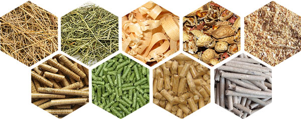 What Can Biomass Pellets Bring Us?