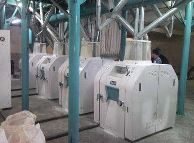 Large Set of Flour Mill Plant