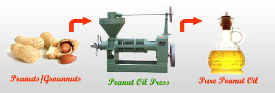 make peanut oil with YZS100 oil press
