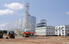 100 t/d seed oil extraction plant in Zambia